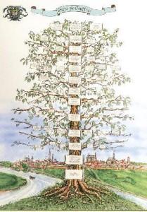 albero_01 (2)